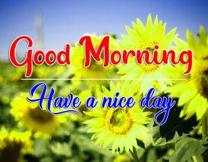 Best HDFlower Good Morning Images