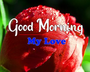 Best New Good Morning Images Pics Download