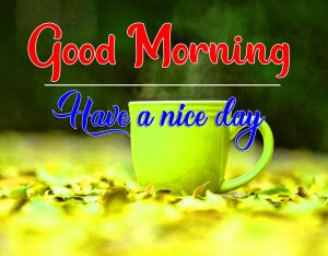 Best Quality Good Morning Images Pics New Download