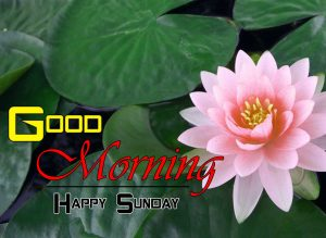 Cute Good Morning Images Pics 3