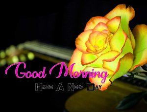Cute Good Morning Photo 2