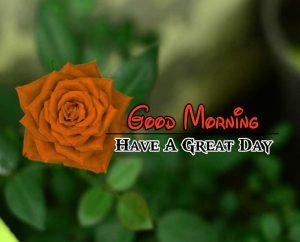 Cute Good Morning Pics 4