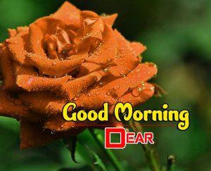 Cute Good Morning Pics Images 4