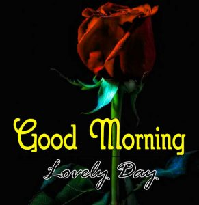 Cute Good Morning Pictures Free