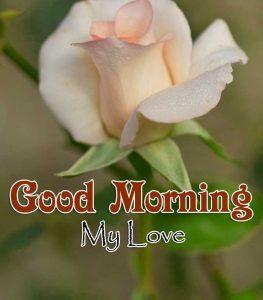 Cute Good Morning Wallpaper Hd