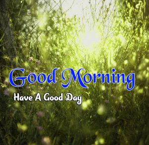 Cute Good Morning photo 1