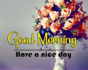 Flower Good Morning Images Wallpaper Download