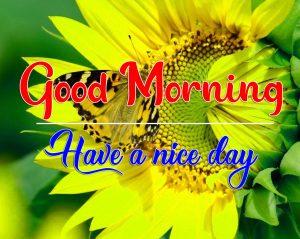 Flower Good Morning Photo for Facebook 3
