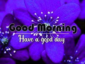 Flower Good Morning Photo for Facebook 4
