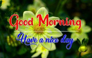 Flower Good Morning Photo for Facebook Whatsapp