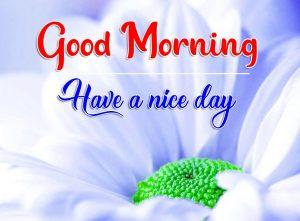 Flower Good Morning Pics Download 5