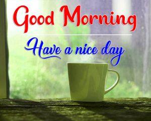 Flower Good Morning Pics for Facebook