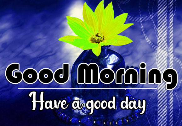 296+ Great Good Morning Whatsapp DP Profile Images HD Download