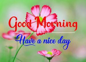 Flower Good Morning Wallpaper 2021
