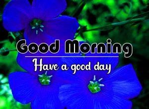 Flower Good Morning Wallpaper Free 2