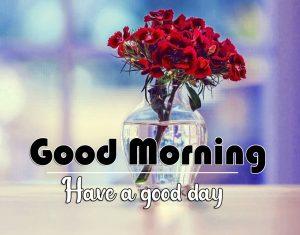 Flower Good Morning Wallpaper Red Flower