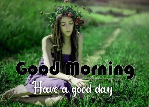 Flower Good Morning photo Download