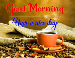 Free All Good Morning Images Pics