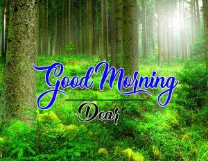 Free Full HD Good Morning Images Wallpaper Download