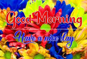 Free Good Morning Images Wallpaper Download 2