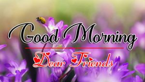 Free Good Morning all Images Pics Download 2