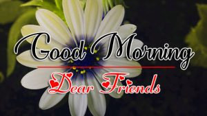 Free Good Morning all Images Pics pictures