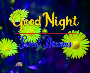 Free Good Night Photo New Full HD