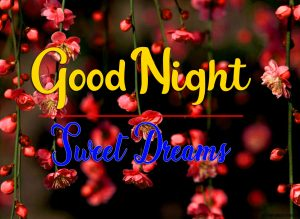Free Good Night Photo for Facebook