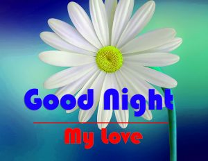 Free Good Night Wallpaper Download 1080p