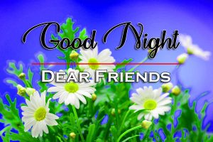 Free Good Night Wallpaper Download 3