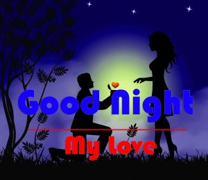 Free Good Night Wallpaper For Lover