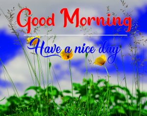 Free HD All Good Morning Pics Pictures