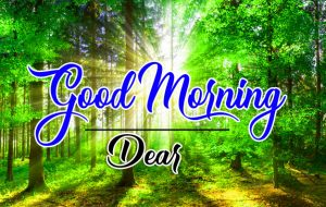 Full HD Good Morning Images Photo Download 3