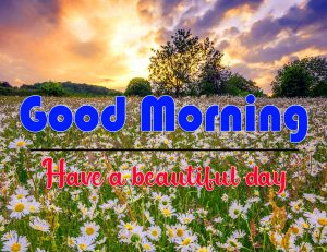 Full HD Good Morning Images Photo for Facebook 2