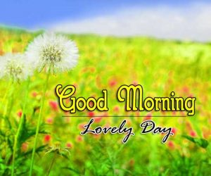 Good Morning Download Free Hd