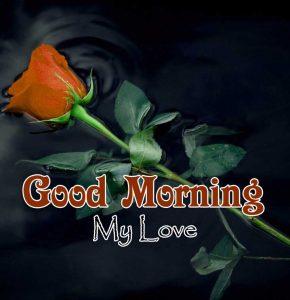 Good Morning Free Photo 1