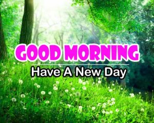 Good Morning Hd Free Download 2