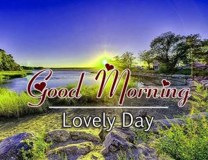 Good Morning Hd Free Images Photo 1