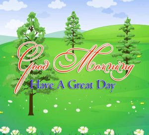 Good Morning Images Download 2
