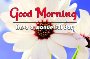 Good Morning Images Photo Download 3