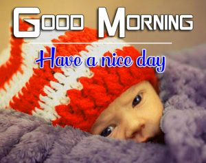 Good Morning Images Photo Download 5