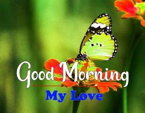 Good Morning Images Photo Free 3
