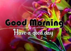 Good Morning Images Pics Download 2021