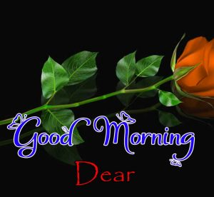 Good Morning Images Pictures 2