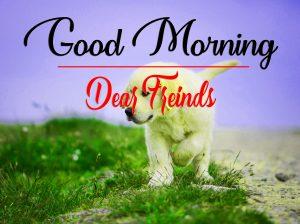 Good Morning Images Wallpaper Download 1