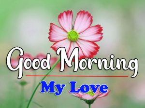 Good Morning Images Wallpaper Download 2