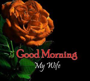 Good Morning Photo Hd Free 2