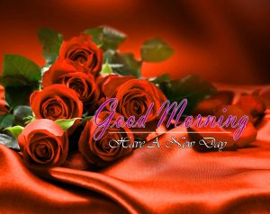 Good Morning Pics Hd Free 2