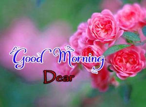 Good Morning Pictures Images 2
