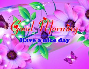 Good Morning all Images Photo For Status